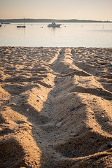 Line in the sand (BrianEden) Tags: sand capecod chatham massachusetts sunrise harwich beach jackknifecove