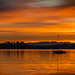 Morning Cruise | Bellevue WA