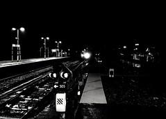 Photo of Midnight Train Going Anywhere