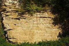 IMG_3534 (ChPflügl) Tags: salzburg österreich austria autumn fall herbst spazieren puch bei hallein urstein sunshine altweibersommer salzach kitsch chpflügl chpfluegl christian europe europa eu world erde sandstone