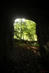IMG_3531 (ChPflügl) Tags: salzburg österreich austria autumn fall herbst spazieren puch bei hallein urstein sunshine altweibersommer salzach kitsch chpflügl chpfluegl christian europe europa eu world erde sandstone cave höhle