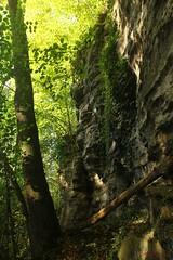 IMG_3501 (ChPflügl) Tags: salzburg österreich austria autumn fall herbst spazieren puch bei hallein urstein sunshine altweibersommer salzach kitsch chpflügl chpfluegl christian europe europa eu world erde sandstone