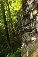 IMG_3498 (ChPflügl) Tags: salzburg österreich austria autumn fall herbst spazieren puch bei hallein urstein sunshine altweibersommer salzach kitsch chpflügl chpfluegl christian europe europa eu world erde sandstone