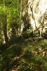 IMG_3478 (ChPflügl) Tags: salzburg österreich austria autumn fall herbst spazieren puch bei hallein urstein sunshine altweibersommer salzach kitsch chpflügl chpfluegl christian europe europa eu world erde sandstone