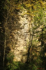 IMG_3459 (ChPflügl) Tags: salzburg österreich austria autumn fall herbst spazieren puch bei hallein urstein sunshine altweibersommer salzach kitsch chpflügl chpfluegl christian europe europa eu world erde sandstone