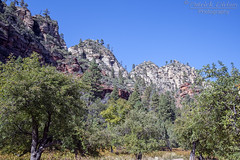Oct102019_3945 (Patrick Dirlam) Tags: arizona trips westforkoakcreektrail sedona