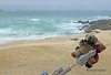St Ives DT & Dee Gull3