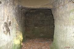 IMG_3527 (ChPflügl) Tags: salzburg österreich austria autumn fall herbst spazieren puch bei hallein urstein sunshine altweibersommer salzach kitsch chpflügl chpfluegl christian europe europa eu world erde sandstone cave höhle