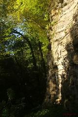 IMG_3496 (ChPflügl) Tags: salzburg österreich austria autumn fall herbst spazieren puch bei hallein urstein sunshine altweibersommer salzach kitsch chpflügl chpfluegl christian europe europa eu world erde sandstone
