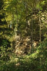 IMG_3475 (ChPflügl) Tags: salzburg österreich austria autumn fall herbst spazieren puch bei hallein urstein sunshine altweibersommer salzach kitsch chpflügl chpfluegl christian europe europa eu world erde