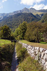 Ditch (Bephep2010) Tags: 2019 7markiii alpen alpha berg bern graben ilce7m3 oberried oberriedambrienzersee sel24105g schweiz sommer sony switzerland wald alps ditch forest mountain summer ⍺7iii kantonbern