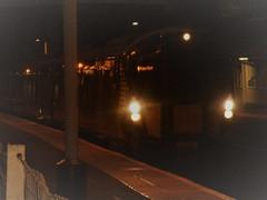 Photo of Night Train