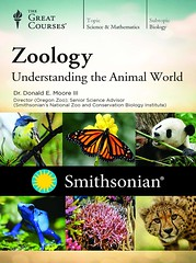 Thermodynamics: Four Laws that Move the Universe (smallpocketlibrary) Tags: free book bookspdf pdf medicine psychology ebook booksmedicine nutrition cosmos universe science physics technology astronomy neurology surgery anatomy biology chemistry mathematics university infographic picture photography animal wildlife fitness insects amazing wonderful incredibility beauty awesome nature smallpocketlibrary