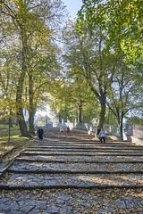 stairs to st anna mountain (van1o) Tags: saintannamountain autumn autumncolors poland polska sony sonya7 sonyilce7 sonay7