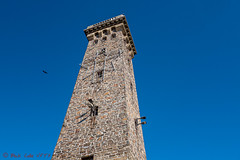 Bird, also the tower (ViewFromTheStreet) Tags: allrightsreserved architecture berks berkscounty blick blickcalle blickcallevfts calle cityofreading copyright2019 firetower pennsylvania photography readingpa skylinedrive stphotographia streetphotography viewfromthestreet williampenn williampennmemorialfiretower amazing beautiful bird birdflying blue bluesky candid classic freeasabird memorial reading reinforcedconcrete sky stone street tower vftsviewfromthestreet ©blickcallevfts ©copyright2019blickcalle