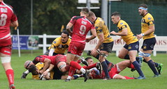 840A1488 (Steve Karpa Photography) Tags: henleyhawks redruth rugbyunion rugby sport game competition outdoorsport