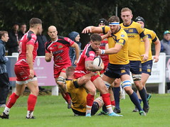 840A1388 (Steve Karpa Photography) Tags: henleyhawks redruth rugbyunion rugby sport game competition outdoorsport