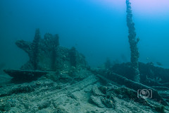 Copenhagen Wreck and Reef Dive September 27, 2019 BLS-65BLS61 (brianlusmith) Tags: scuba divers scubadivers padi ocean diving coral reef fish rock underwater water sealife wreck saltwater