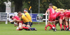 840A1342 (Steve Karpa Photography) Tags: henleyhawks redruth rugbyunion rugby sport game competition outdoorsport