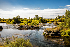Falls River (wyojones) Tags: idaho chester us20 fallsriver trees rapids water basalt columnarbasalt cottonwoods fishing fishermen clouds afternoon igneous lava extrusive rock fremontcounty 83421 willows august