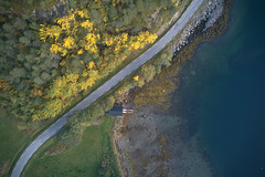 Yellow (Skaalnes) Tags: dji mavic drone aerial norway møreogromsdal sunset woods trees green autumn fall colours colors aure todalen ocean sea boathouse shore seaweed road