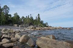 Along the coast (Stefano Rugolo) Tags: stefanorugolo pentax k5 pentaxk5 smcpentaxda1855mmf3556alwr kmount kitlens landscape coast trees rocks pebbles sea water shore balticsea seascape sweden summer