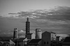 P1103364_mono_LR (enno7898) Tags: panasonic lumix lumixg9 dcg9 xvario 35100mm f28 monotone monochrome taipei101 101building architecture sky skyscraper cityscape