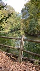 (denisandradeds) Tags: wallpaper iphone floresta rio river