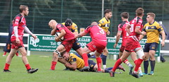 840A1369 (Steve Karpa Photography) Tags: henleyhawks redruth rugbyunion rugby sport game competition outdoorsport