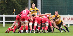840A1339 (Steve Karpa Photography) Tags: henleyhawks redruth rugbyunion rugby sport game competition outdoorsport