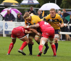 840A1320 (Steve Karpa Photography) Tags: henleyhawks redruth rugbyunion rugby sport game competition outdoorsport