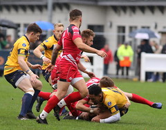 840A1310 (Steve Karpa Photography) Tags: henleyhawks redruth rugbyunion rugby sport game competition outdoorsport