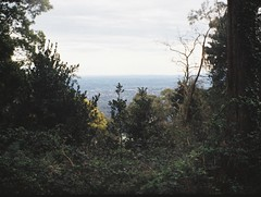 Pleasant view (Matthew Paul Argall) Tags: regula430 fixedfocus 110 110film subminiaturefilm lomographyfilm 200isofilm view kalorama