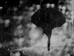 October rain (P. Correia) Tags: lisboa iphone5s lisbon pcorreia