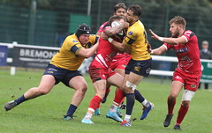 840A1408 (Steve Karpa Photography) Tags: henleyhawks redruth rugbyunion rugby sport game competition outdoorsport