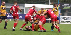 840A1399 (Steve Karpa Photography) Tags: henleyhawks redruth rugbyunion rugby sport game competition outdoorsport