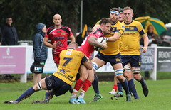 840A1386 (Steve Karpa Photography) Tags: henleyhawks redruth rugbyunion rugby sport game competition outdoorsport
