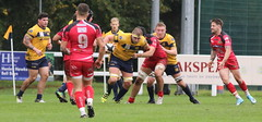840A1378 (Steve Karpa Photography) Tags: henleyhawks redruth rugbyunion rugby sport game competition outdoorsport