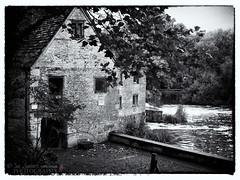 The Mill at Sturminster Newton (Nanooki) Tags: england dorset niksilverefexpro2 unitedkingdom sturminsternewton ©suelambertlrpscpagb themill