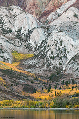 Eastern Sierra Colors (sierrasylvan) Tags: adobebridgecc adobelightroomcc adobephotoshopcc canonef70200mmf28lisllusmlens canoneos6d bwmrcfprokaessermancircularpolarizingfilter convictlake sierranevadamountains easternsierranevada laurelmountain california monocounty manfrotto190xprobtripod manfrotto496rc2compactballhead autumncolors2019 fallcolors2019 forest nature
