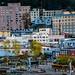 2019 - HAL Alaska Cruise - 13 - Juneau CBD