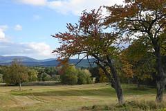Autumn on Deeside (Ian Robin Jackson) Tags: aberdeenshire autumn scotland landscape sony zeiss fields hills