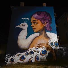 Mural by Tatiana Suarez (RKop) Tags: streatart blink cincinnati 2019 raphaelkopanphotography d500 1020nikkoraf‑pdx