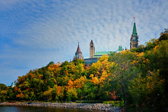 Autumn in the Capital (Dan Haug) Tags: parliamenthill autumn foliage escarpment emerge ottawa river fall october 2019 canopy desiduous trees xf23mm xf23mmf14r xpro2 fujifilm fujixseries mirrorless gothicrevival architecture library