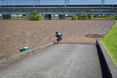 The Arakawa after typhoon Hagibis #3 (tokyobogue) Tags: tokyo japan typhoon typhoonhagibis hagibis nikon nikond7100 d7100 sigma sigma1750mmexdcoshsm arakawa riverbank river flood flooding 荒川 東京 板橋区