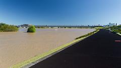The Arakawa after typhoon Hagibis #2 (tokyobogue) Tags: tokyo japan typhoon typhoonhagibis hagibis nikon nikond7100 d7100 sigma sigma1750mmexdcoshsm arakawa riverbank river flood flooding 荒川 東京 板橋区