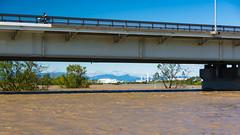 The Arakawa after typhoon Hagibis #1 (tokyobogue) Tags: tokyo japan typhoon typhoonhagibis hagibis nikon nikond7100 d7100 sigma sigma1750mmexdcoshsm arakawa riverbank river flood flooding 荒川 東京 板橋区