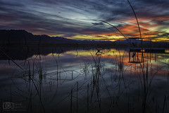 Deep inside his heart, he can't escape (Dave Arnold Photo) Tags: az ariz arizona topock marsh goldenshores bay lostlake coloradoriver reflection sunset water needles mountainrange rural beautiful image pic picture arnold us usa photo photograph photography photographer davearnold davearnoldphotocom awesome beauty landscape nature scape wonderful viral best scenic oatman wildlife preserve catfish paradise southwest western kingman havasu cloud sky deadtree mkiii 5d extreme pro professional canon lens color reflect pier peir dock