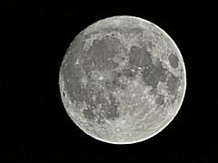 La luna sobre Eibar, esta pasada noche (eitb.eus) Tags: eitbcom 3293 g1 tiemponaturaleza tiempon2019 gipuzkoa eibar rikardoagirregomezkorta