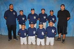ContentMint-(J5B-A14s18)-#6133-vJAD-Sport-{1947L} (ContentMint) Tags: sports teams baseball softball